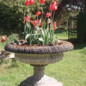 Urns and Planters