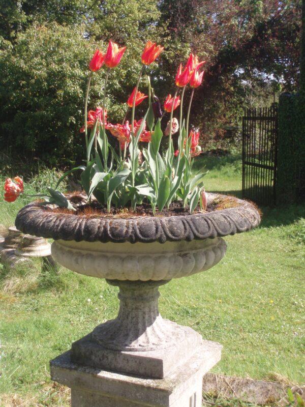 Preston Vase Urn