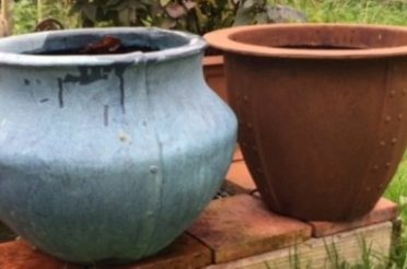 Planting up fibreglass indoor pots and planters for Christmas