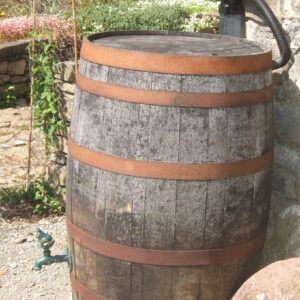 Whiskey barrel water butt